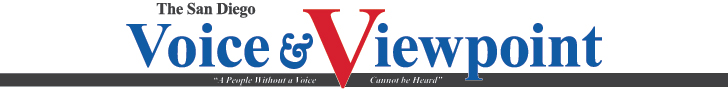 Voice and Viewpoint logo